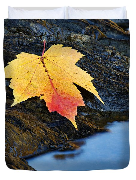 Autumn On The Tellico River - D004558 Duvet Cover