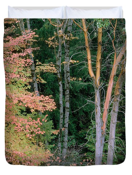 Autumn Scene Duvet Cover by Mark Greenberg