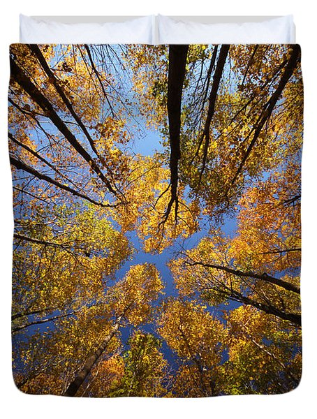 Autumn Sky Duvet Cover by Mircea Costina Photography