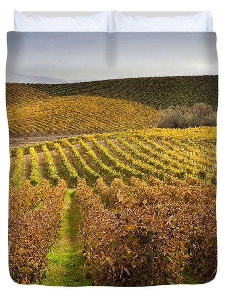 Autumn Vines Duvet Cover by Mike  Dawson