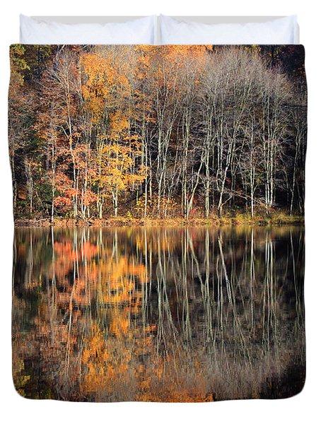 Autumns Art Duvet Cover by Karol Livote