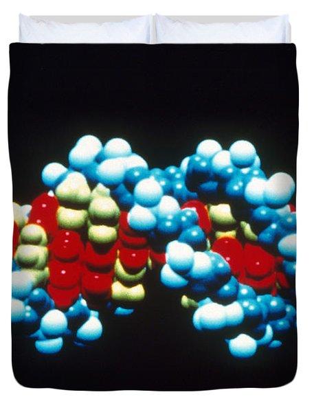 B-dna Molecular Model Duvet Cover