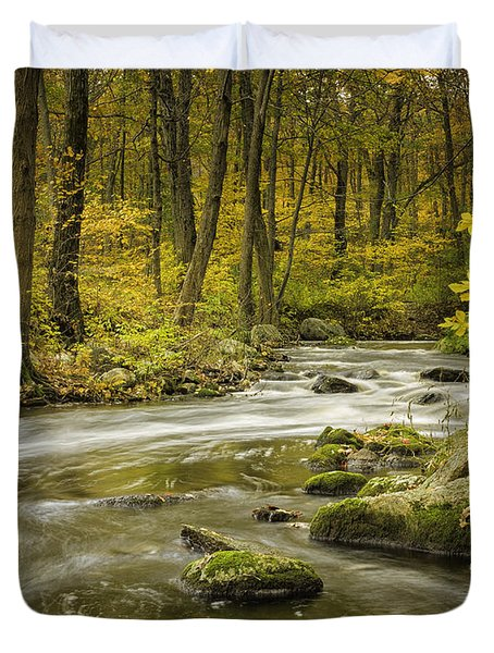 Babbling Brook Duvet Cover by Fran Gallogly