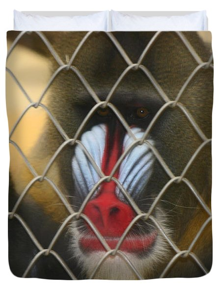 Baboon Behind Bars Duvet Cover by Kym Backland