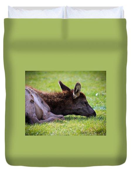 Baby Elk Duvet Cover by Steve McKinzie