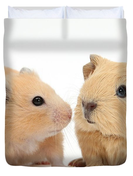 Baby Guinea Pig And Golden Hamster Duvet Cover by Mark Taylor