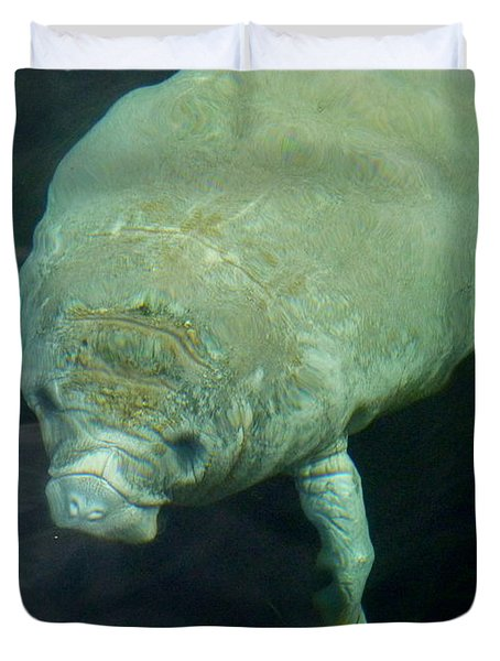 Baby Manatee Duvet Cover by Carla Parris