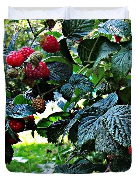 Backyard Berries Duvet Cover