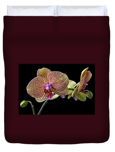 Baeutiful Orchids Duvet Cover by Garry Gay