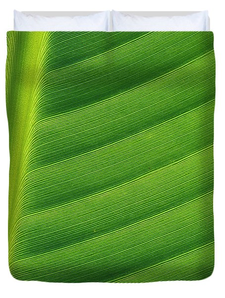 Banana Musa Sp Close Up Of Leaf Duvet Cover by Cyril Ruoso