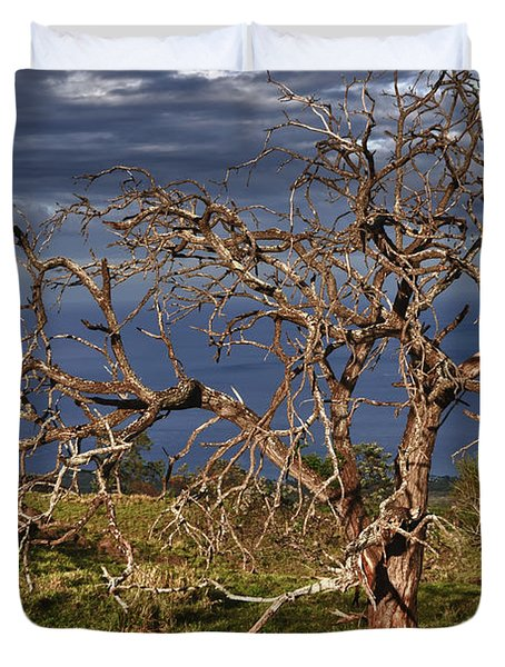 Bare Tree In Hana Maui Duvet Cover