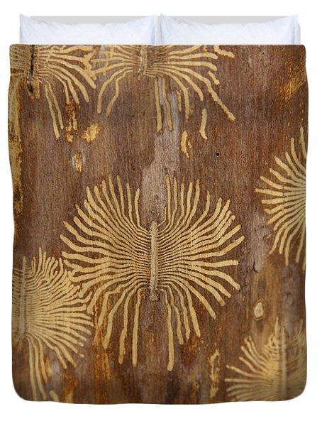 Bark Beetle Galleries Duvet Cover by Ted Kinsman