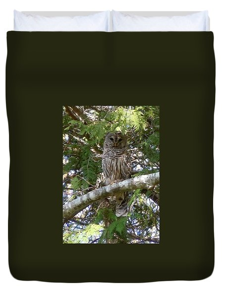 Duvet Cover featuring the photograph Barred Owl  by Francine Frank