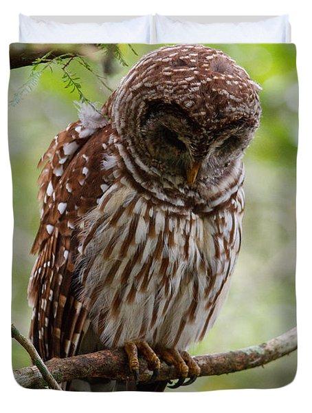Barred Owl Duvet Cover by Joe Elliott
