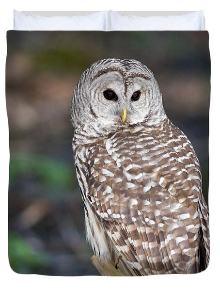Duvet Cover featuring the photograph Barred Owl by Les Palenik