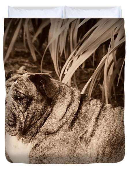 Duvet Cover featuring the photograph Baydie by Jeanette C Landstrom