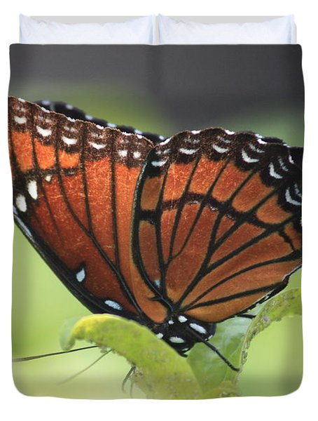 Be Thankful Duvet Cover by Carol Groenen