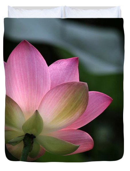 Beautiful Backlit Lotus Duvet Cover by Sabrina L Ryan