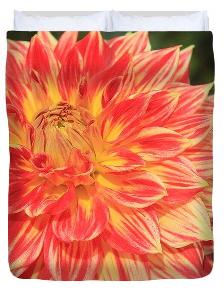 Beautiful Dahlia Duvet Cover