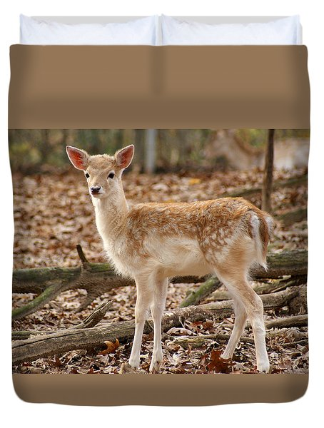 Beautiful Fawn Duvet Cover