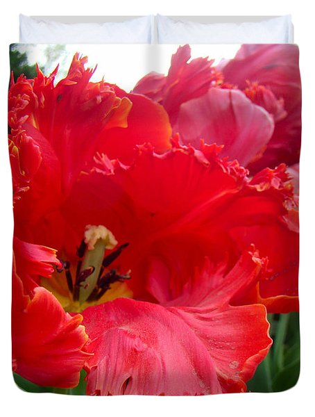 Beautiful From Inside And Out - Parrot Tulips In Philadelphia Duvet Cover by Mother Nature