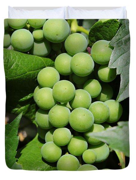 Beautiful Grapes Duvet Cover by Carol Groenen