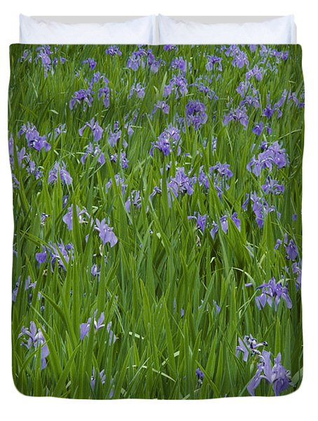 Beautiful Picture Of Irises In Bloom Duvet Cover