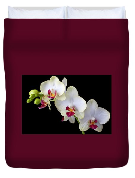Beautiful White Orchids Duvet Cover by Garry Gay