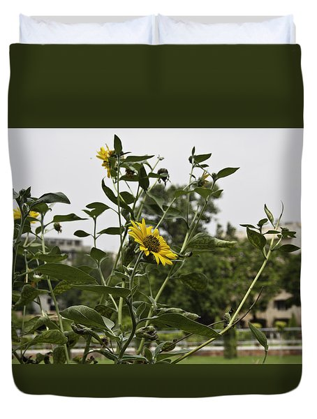 Beautiful Yellow Flower In A Garden Duvet Cover by Ashish Agarwal