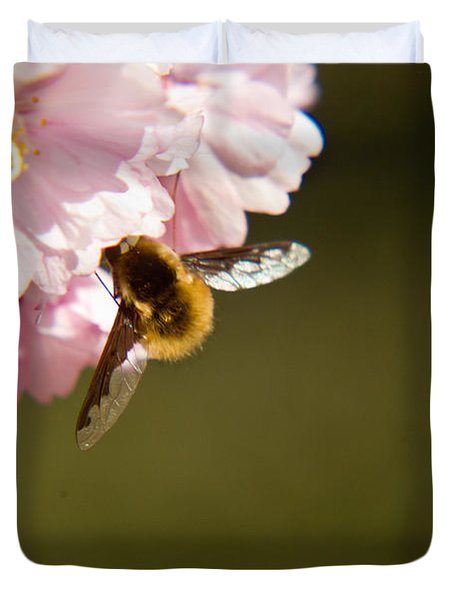Bee Fly Feeding 4 Duvet Cover by Douglas Barnett