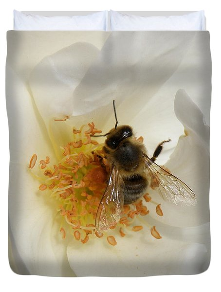 Bee In A White Rose Duvet Cover by Lainie Wrightson
