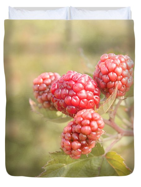 Berry Good Duvet Cover by Kim Hojnacki
