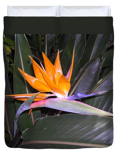 Duvet Cover featuring the digital art Bird Of Paradise by Claude McCoy