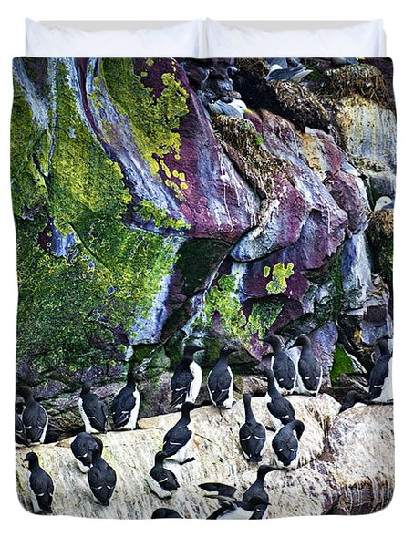 Birds At Cape St. Mary's Bird Sanctuary In Newfoundland Duvet Cover