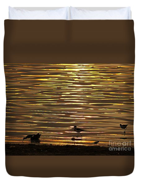 Duvet Cover featuring the photograph Birds Walking In Gold Water Waves by John  Kolenberg