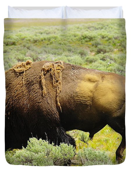Bison Duvet Cover by Jeff Swan