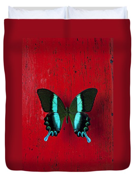 Black And Blue Butterfly  Duvet Cover by Garry Gay