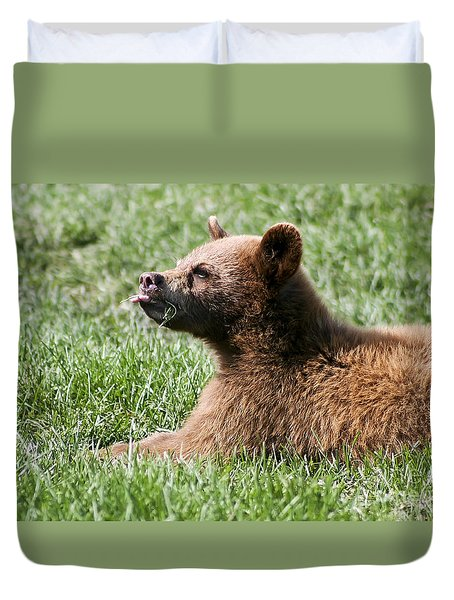 Black Bear Cub I Duvet Cover