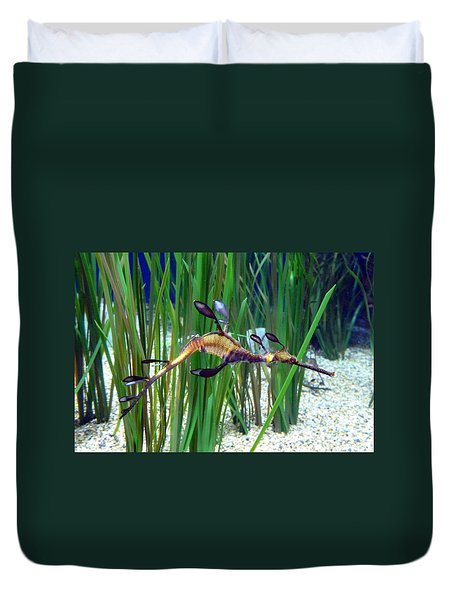 Duvet Cover featuring the photograph Black Dragon Seahorse by Carla Parris