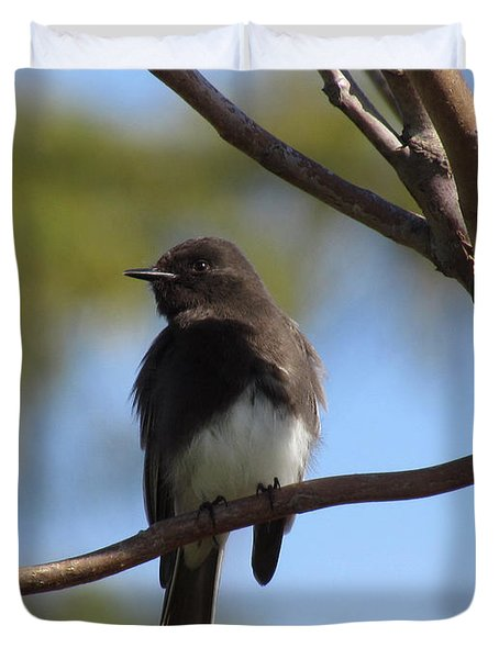 Duvet Cover featuring the photograph Black Phoebe by Bonnie Muir