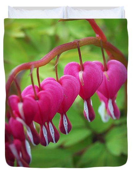 Duvet Cover featuring the photograph Bleeding Heart  by Eva Kaufman