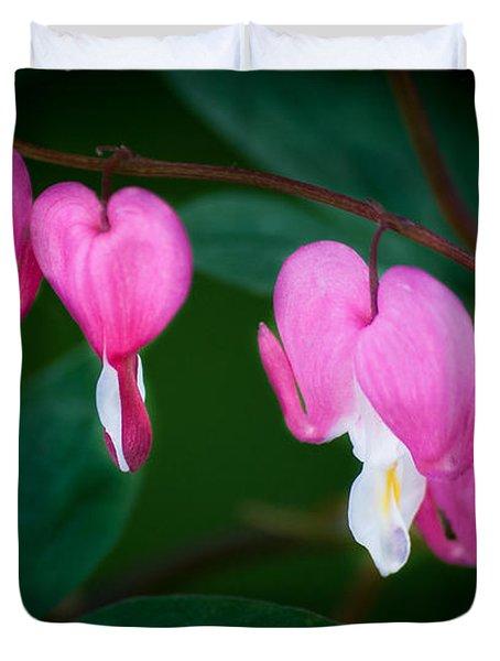 Bleeding Hearts 002 Duvet Cover by Larry Carr