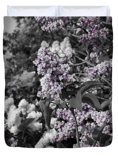 Duvet Cover featuring the photograph Blooms by Colleen Coccia