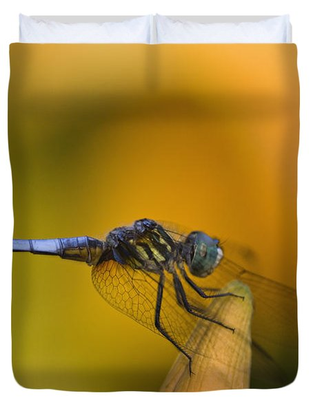 Blue Dasher - D007665 Duvet Cover by Daniel Dempster