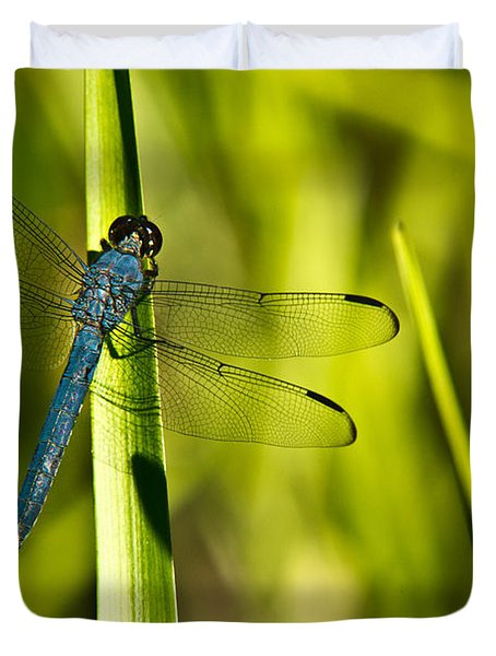 Blue Dragonfly 1 Duvet Cover