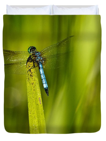 Blue Dragonfly 13 Duvet Cover