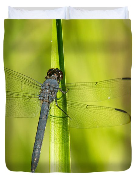 Blue Dragonfly 14 Duvet Cover