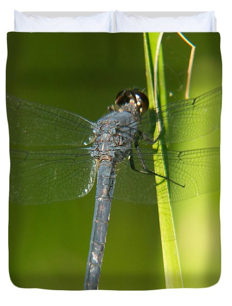Blue Dragonfly 17 Duvet Cover