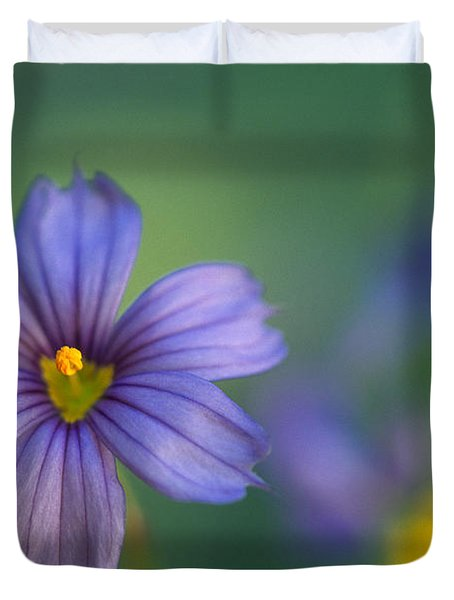 Blue Eyed Grass Duvet Cover by Kathy Yates