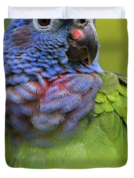 Blue-headed Parrot Pionus Menstruus Duvet Cover by Ingo Arndt